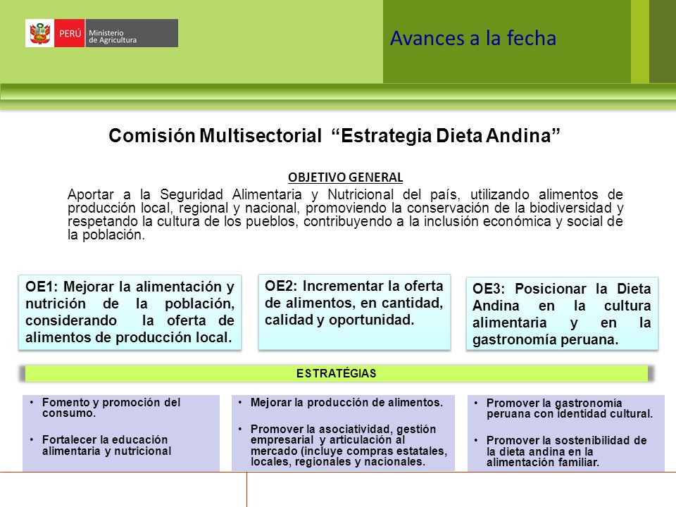 Comisión Multisectorial Estrategia Dieta Andina