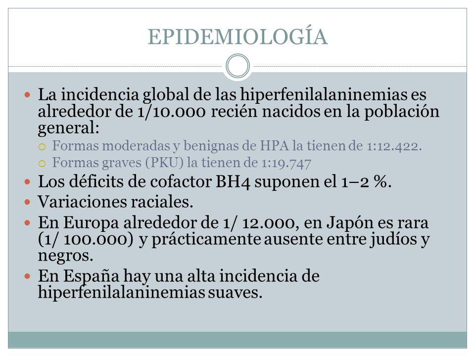 EPIDEMIOLOGÍA La incidencia global de las hiperfenilalaninemias es alrededor de 1/10.000 recién nacidos en la población general: