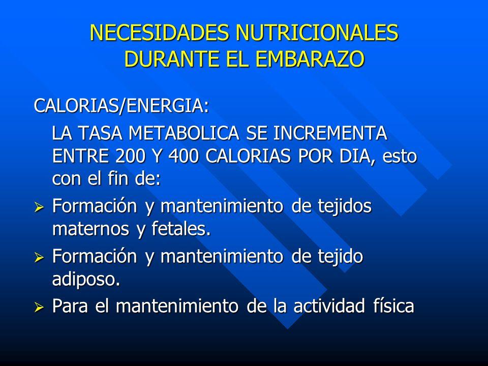 NECESIDADES NUTRICIONALES DURANTE EL EMBARAZO