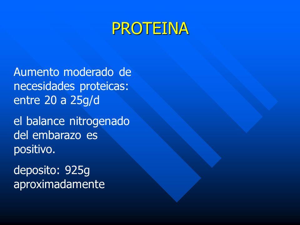 PROTEINA Aumento moderado de necesidades proteicas: entre 20 a 25g/d