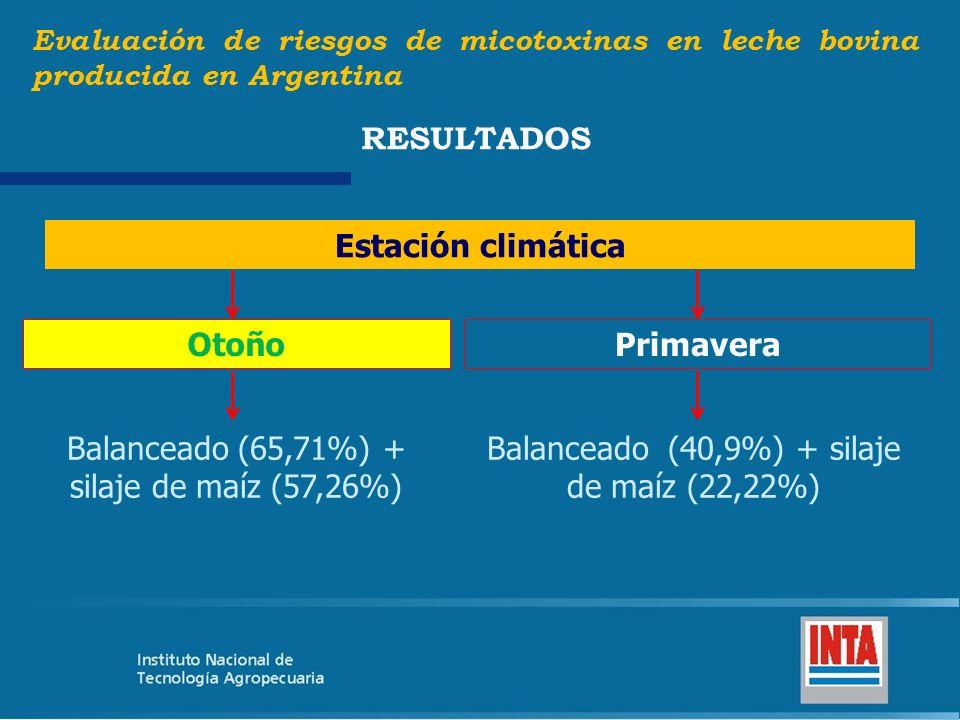 Balanceado (65,71%) + silaje de maíz (57,26%)