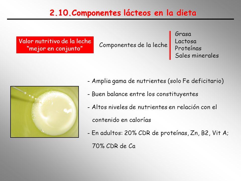 2.10.Componentes lácteos en la dieta