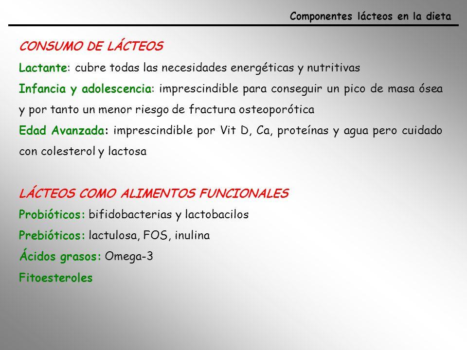 Lactante: cubre todas las necesidades energéticas y nutritivas