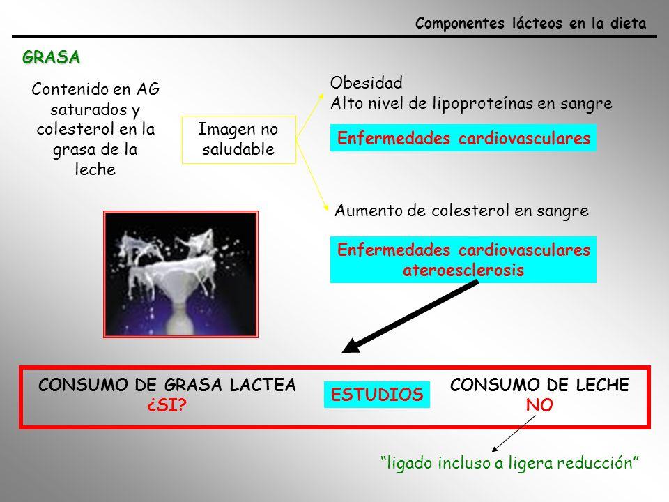 Enfermedades cardiovasculares CONSUMO DE GRASA LACTEA