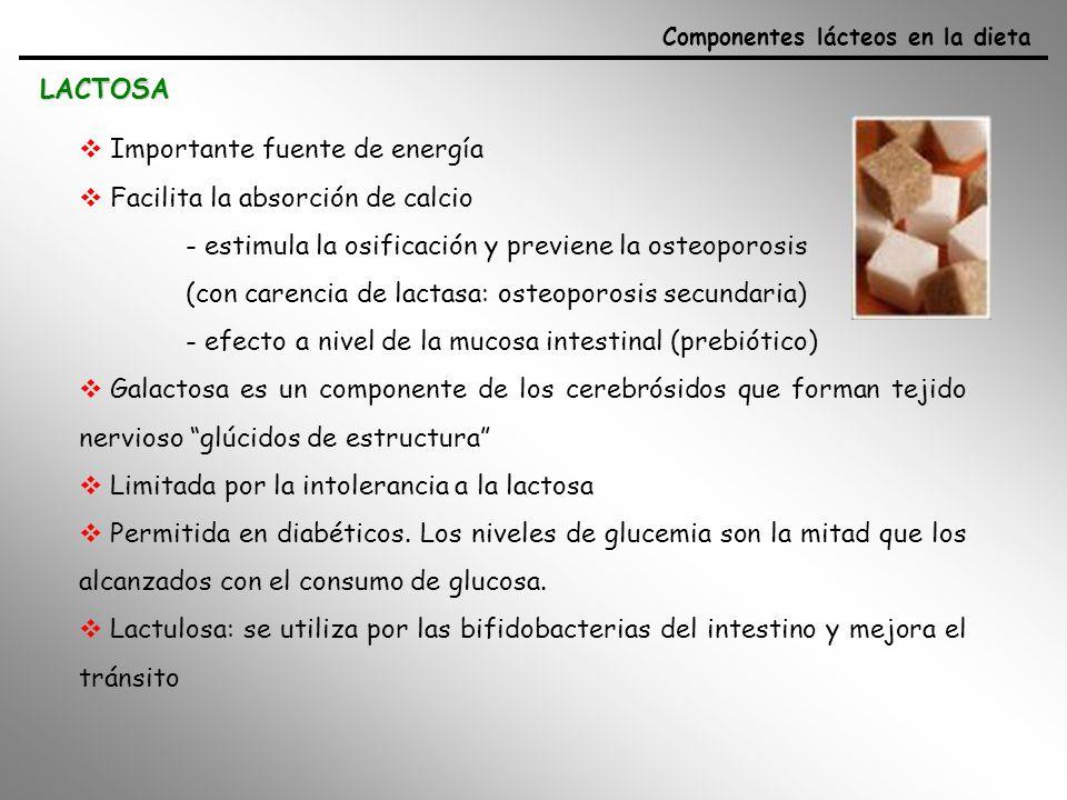 Importante fuente de energía Facilita la absorción de calcio