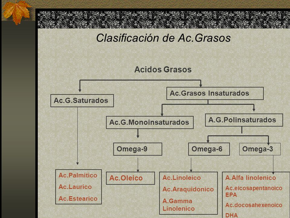 Clasificación de Ac.Grasos