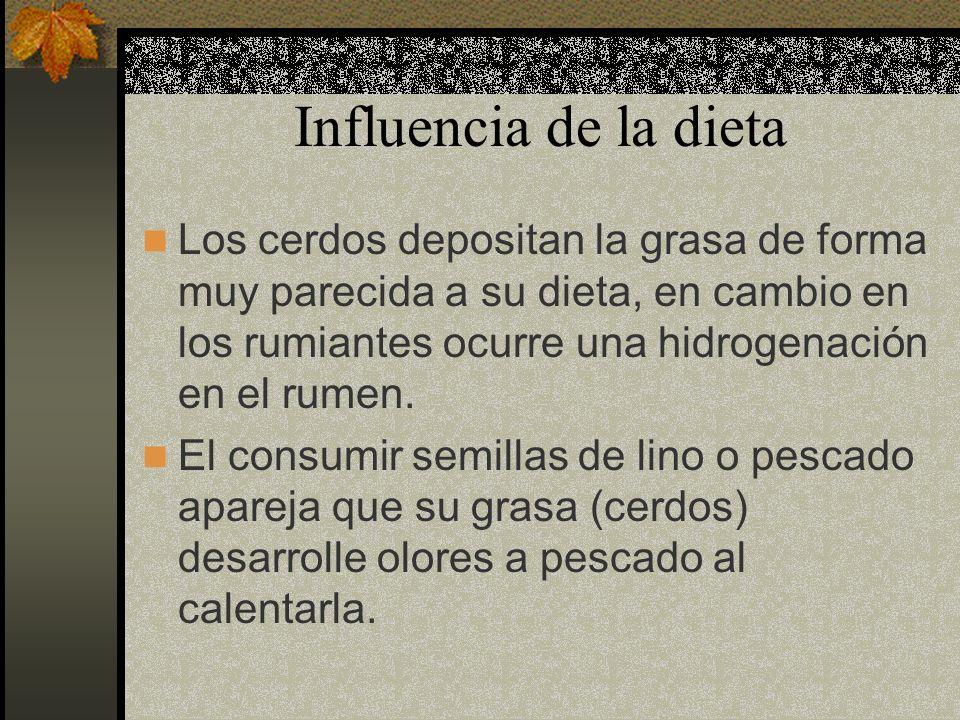 Influencia de la dieta