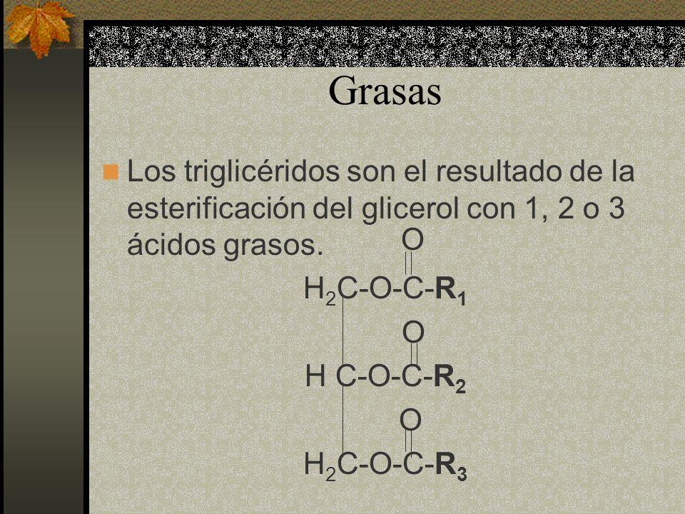 Grasas Los triglicéridos son el resultado de la esterificación del glicerol con 1, 2 o 3 ácidos grasos.