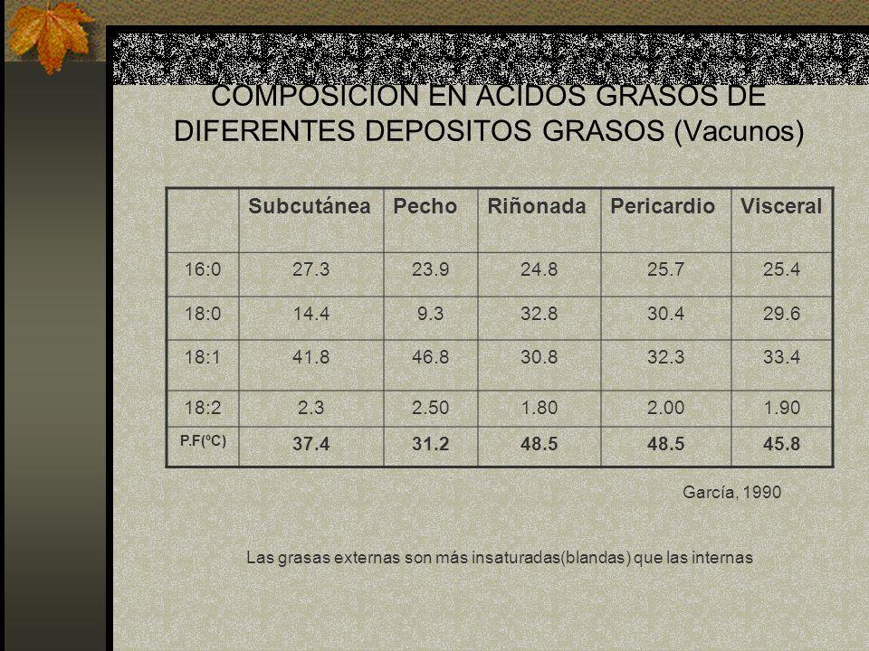 COMPOSICION EN ACIDOS GRASOS DE DIFERENTES DEPOSITOS GRASOS (Vacunos)