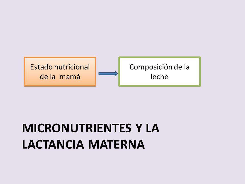 Micronutrientes y la lactancia materna
