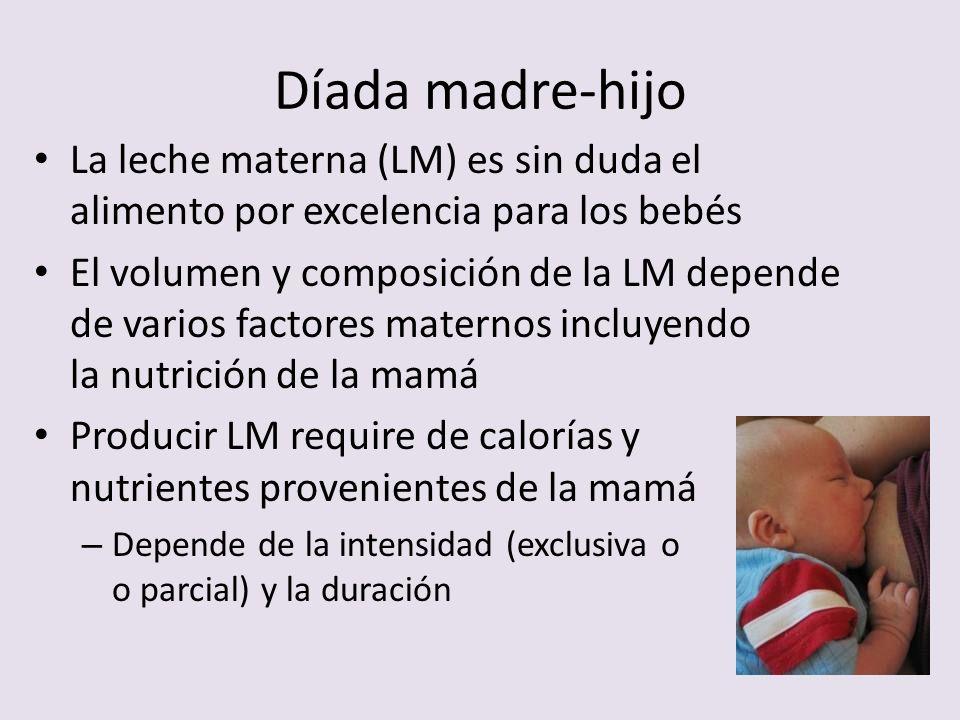 Díada madre-hijo La leche materna (LM) es sin duda el alimento por excelencia para los bebés.