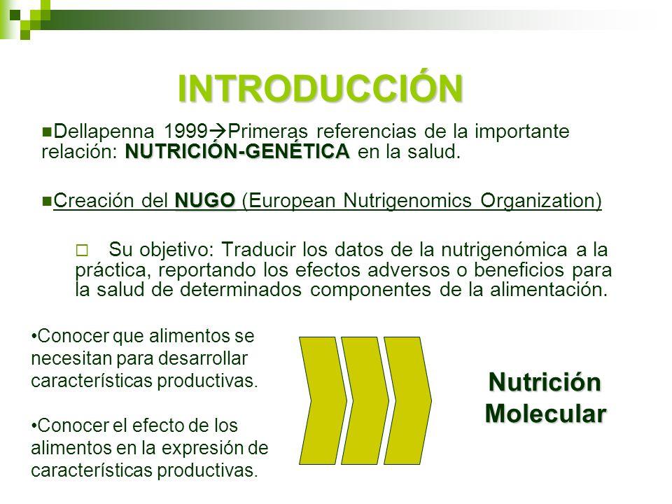 INTRODUCCIÓN Nutrición Molecular