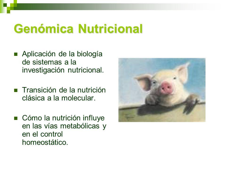 Genómica Nutricional Aplicación de la biología de sistemas a la investigación nutricional. Transición de la nutrición clásica a la molecular.