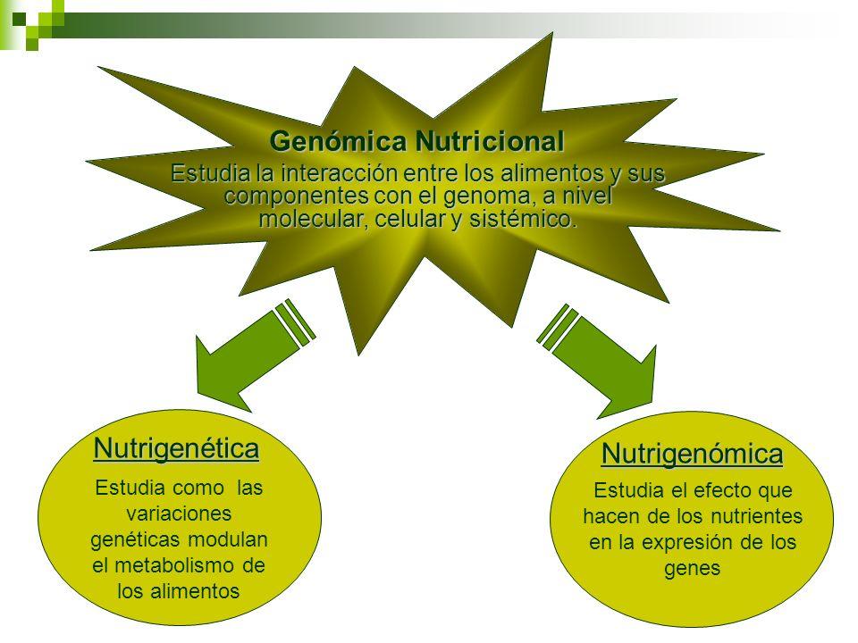 Genómica Nutricional Nutrigenética Nutrigenómica