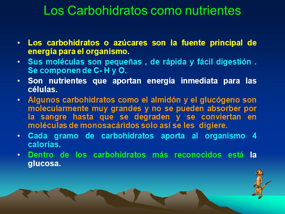 Los Carbohidratos como nutrientes