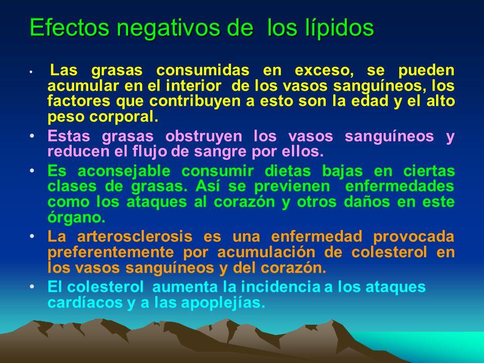 Efectos negativos de los lípidos