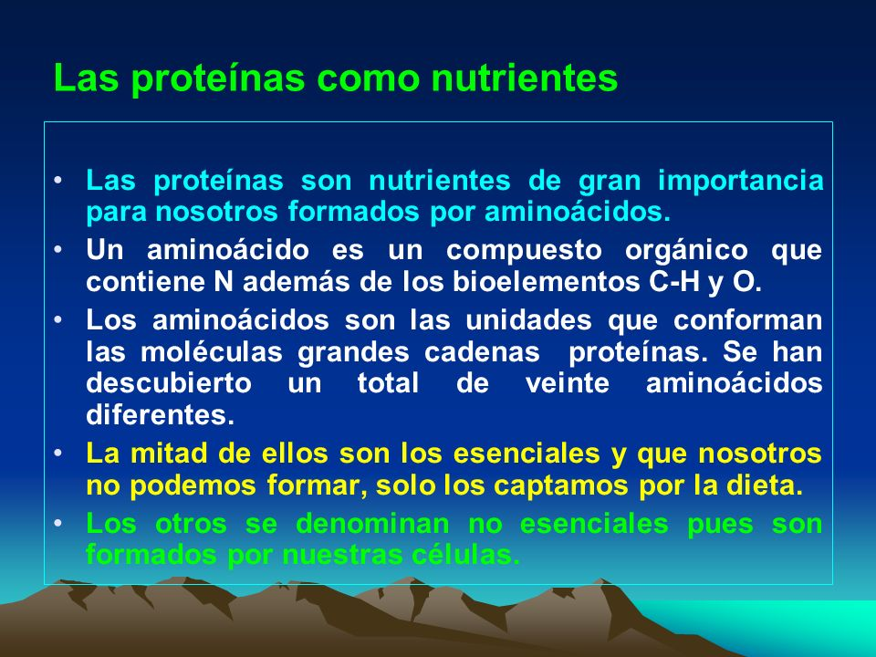 Las proteínas como nutrientes