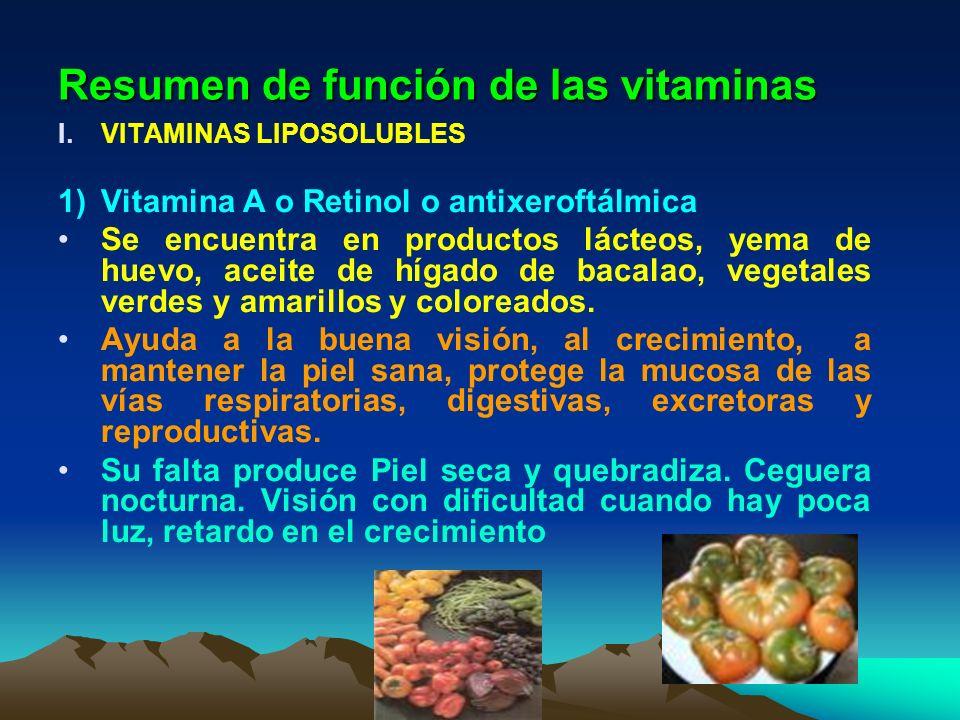 Resumen de función de las vitaminas