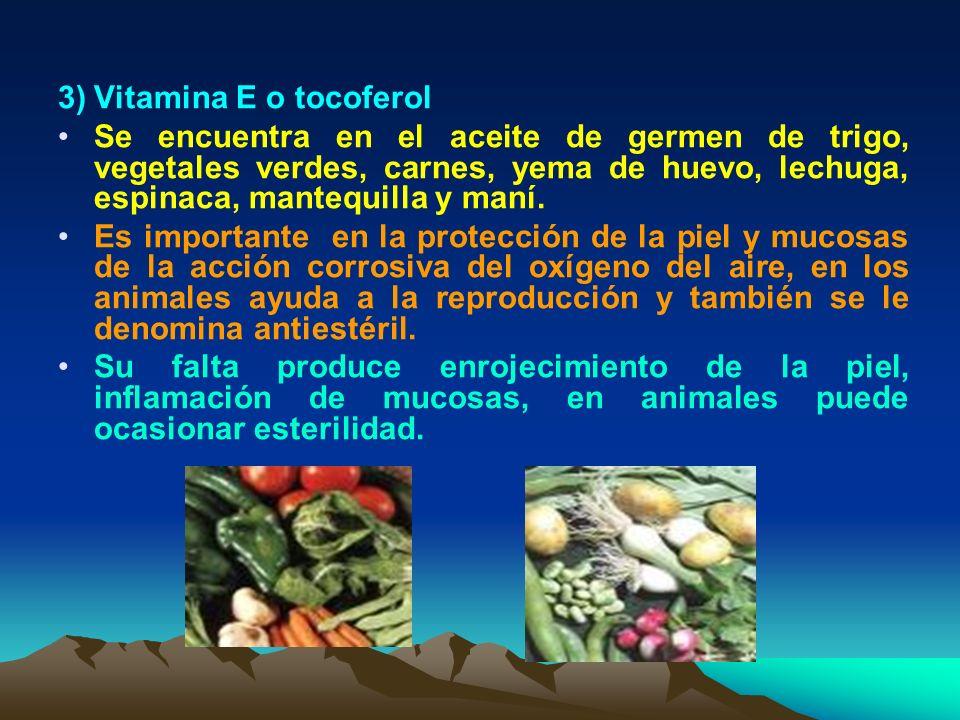 3) Vitamina E o tocoferol