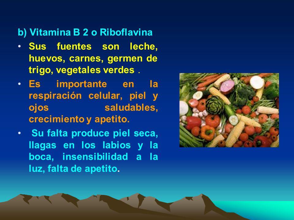 b) Vitamina B 2 o Riboflavina