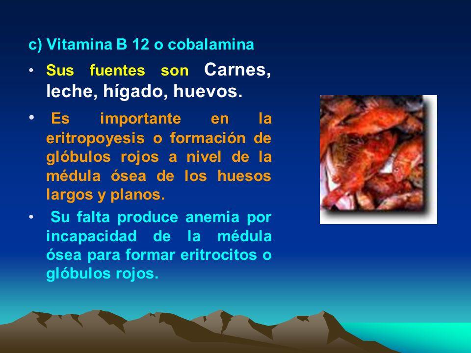 c) Vitamina B 12 o cobalamina
