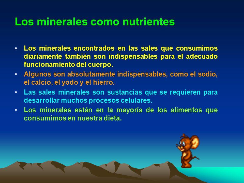 Los minerales como nutrientes