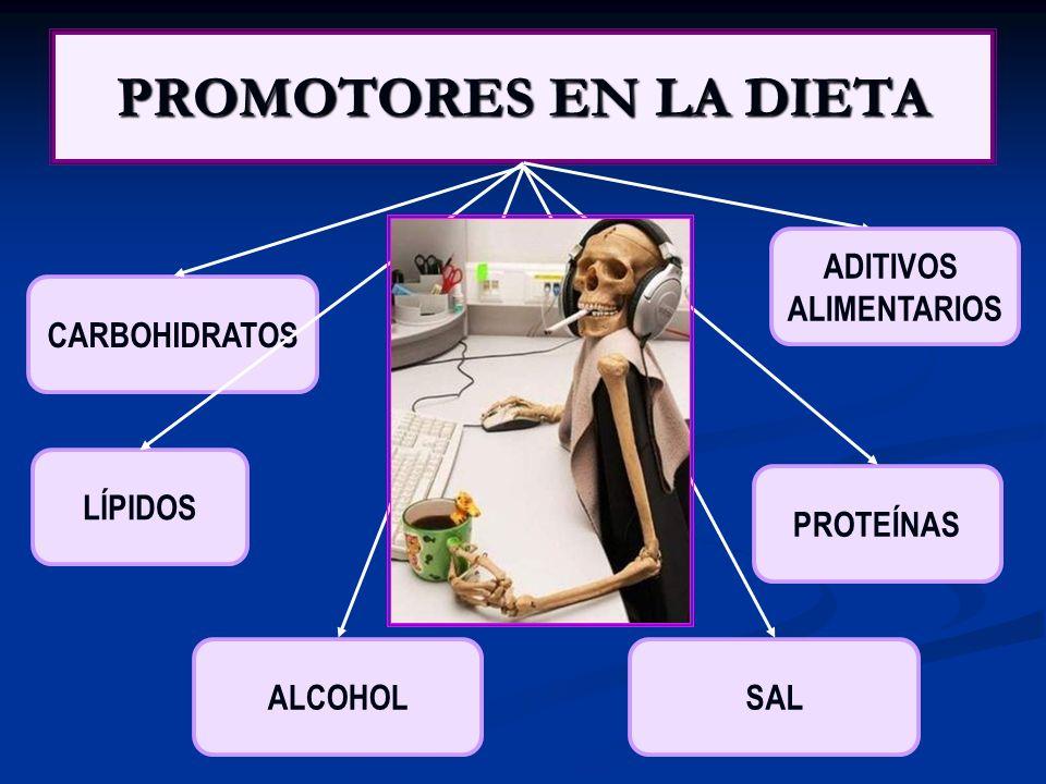 PROMOTORES EN LA DIETA ADITIVOS ALIMENTARIOS CARBOHIDRATOS LÍPIDOS