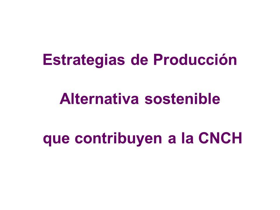 Estrategias de Producción Alternativa sostenible