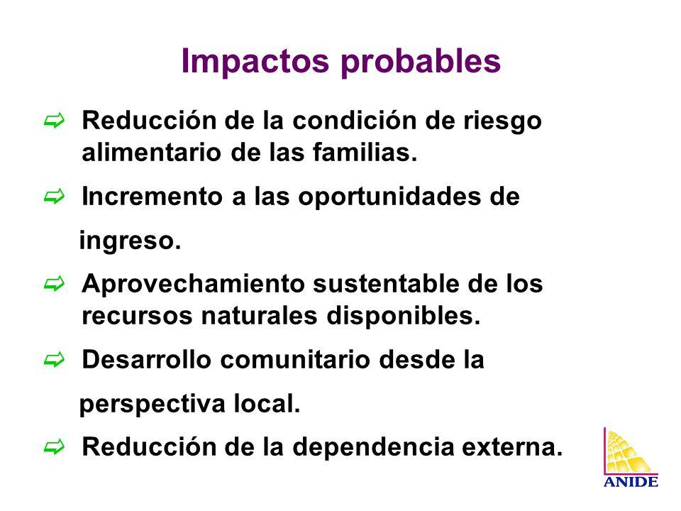 Impactos probables Reducción de la condición de riesgo alimentario de las familias. Incremento a las oportunidades de.