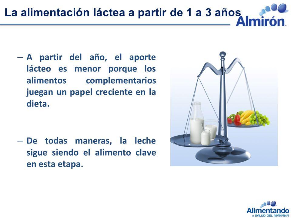 La alimentación láctea a partir de 1 a 3 años