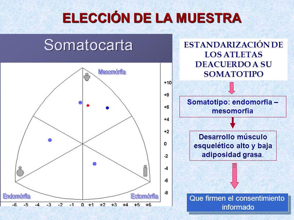 ELECCIÓN DE LA MUESTRA ESTANDARIZACIÓN DE LOS ATLETAS DEACUERDO A SU SOMATOTIPO. Somatotipo: endomorfia – mesomorfia.