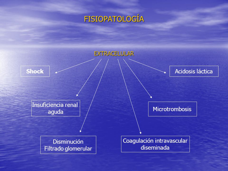 Coagulación intravascular
