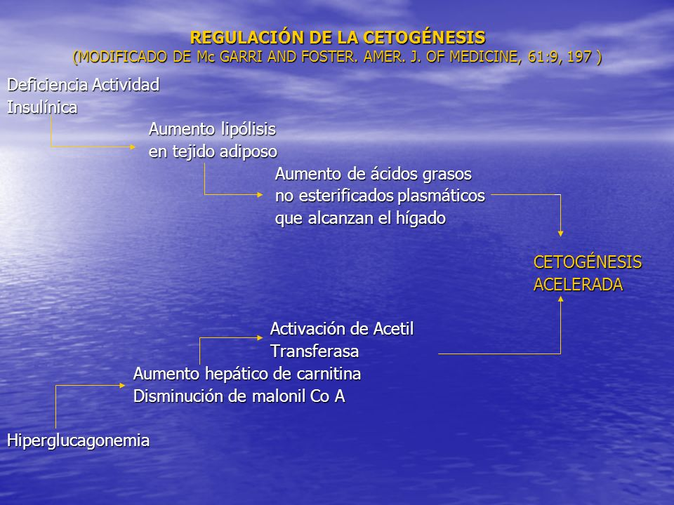 REGULACIÓN DE LA CETOGÉNESIS (MODIFICADO DE Mc GARRI AND FOSTER. AMER