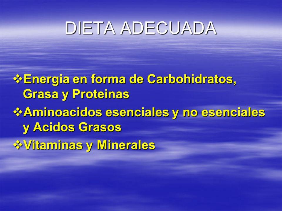DIETA ADECUADA Energia en forma de Carbohidratos, Grasa y Proteinas