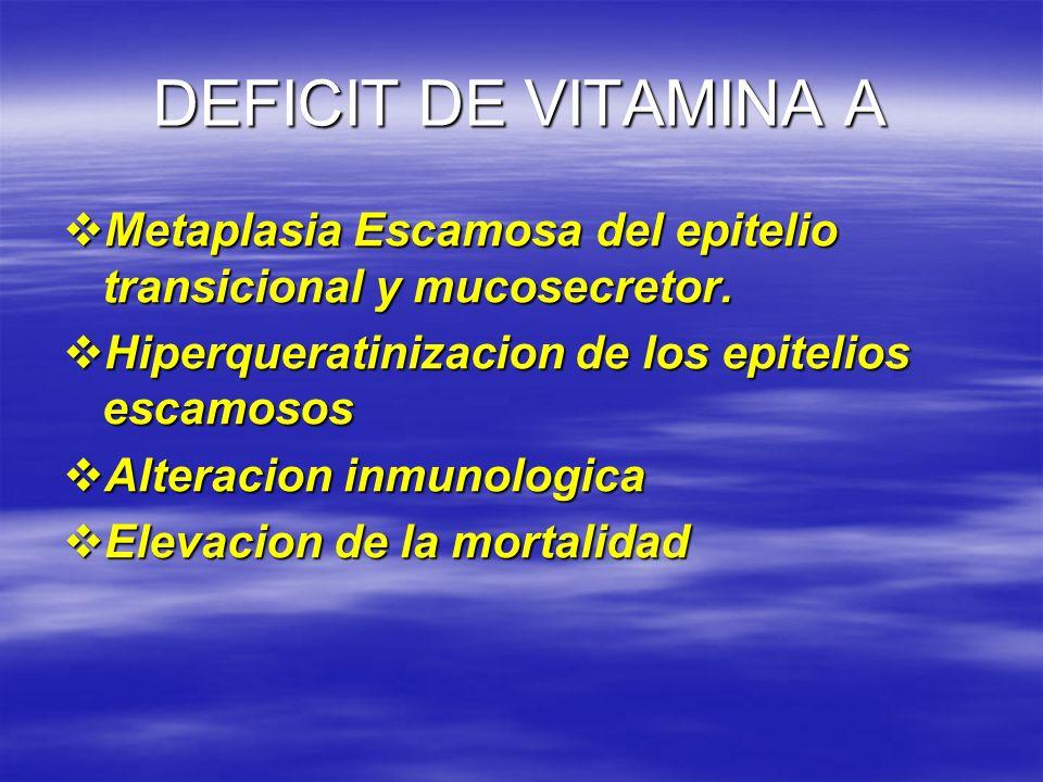 DEFICIT DE VITAMINA A Metaplasia Escamosa del epitelio transicional y mucosecretor. Hiperqueratinizacion de los epitelios escamosos.