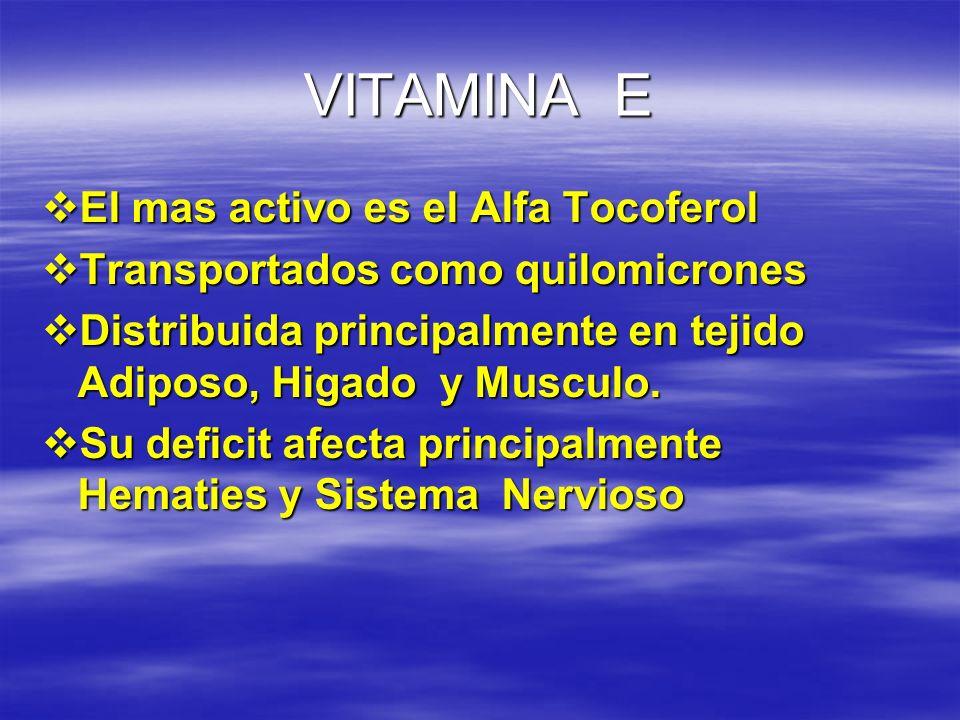 VITAMINA E El mas activo es el Alfa Tocoferol