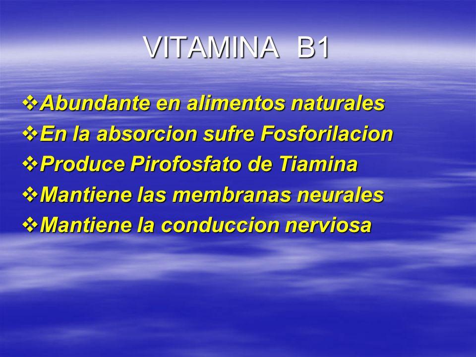 VITAMINA B1 Abundante en alimentos naturales