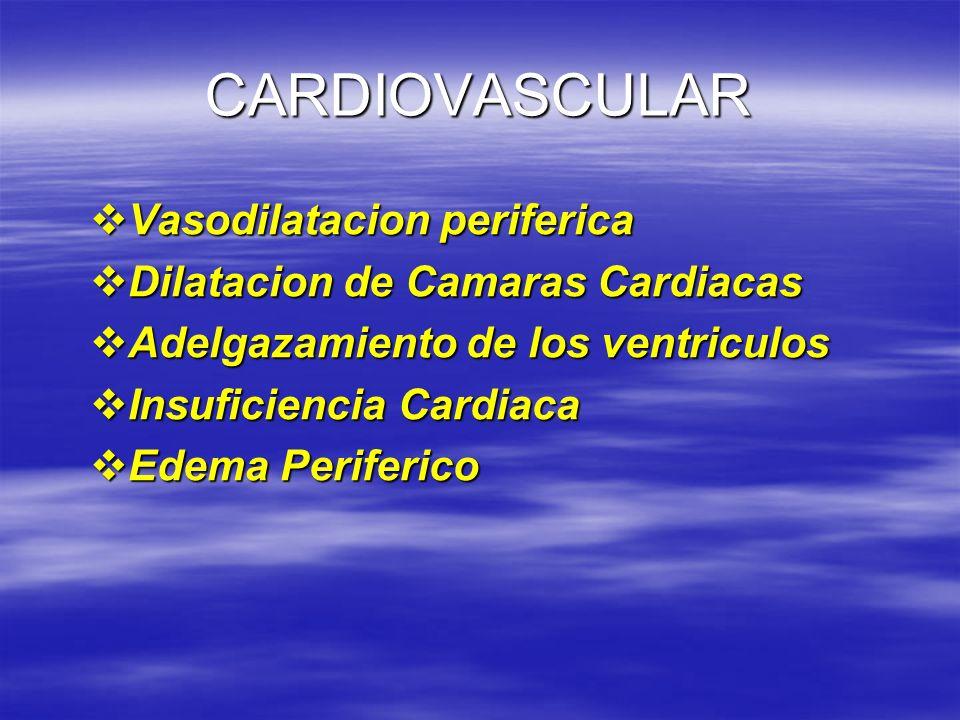 CARDIOVASCULAR Vasodilatacion periferica