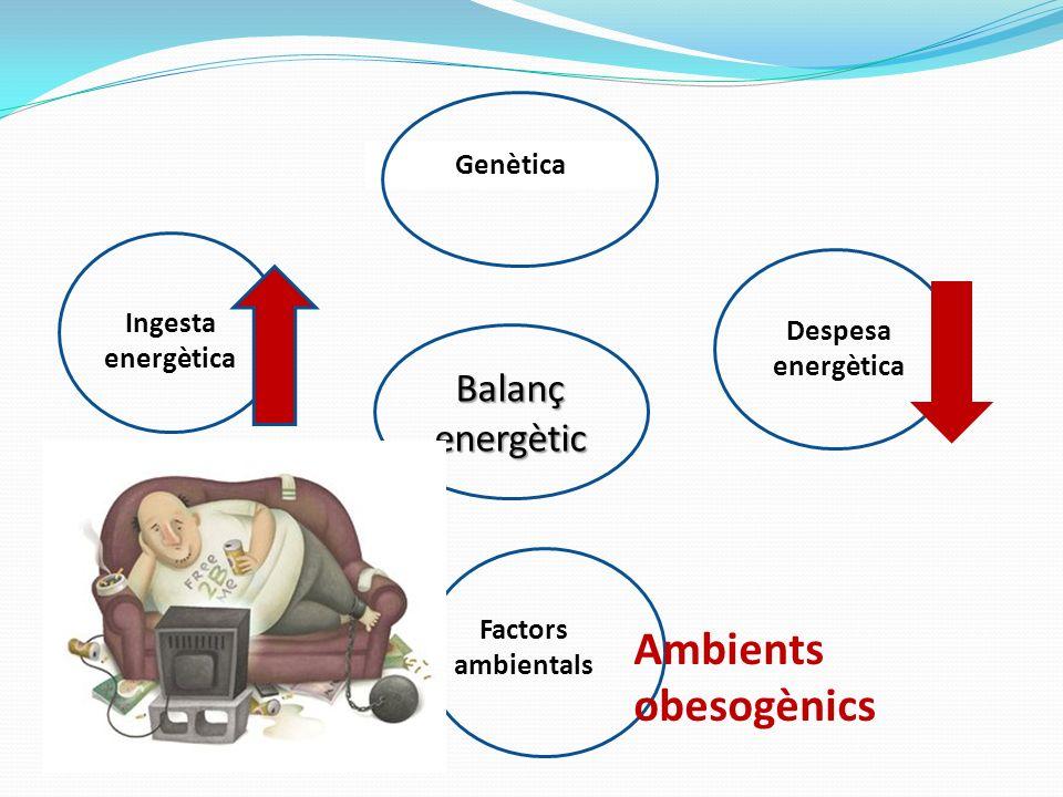 Ambients obesogènics Balanç energètic Genètica Ingesta energètica