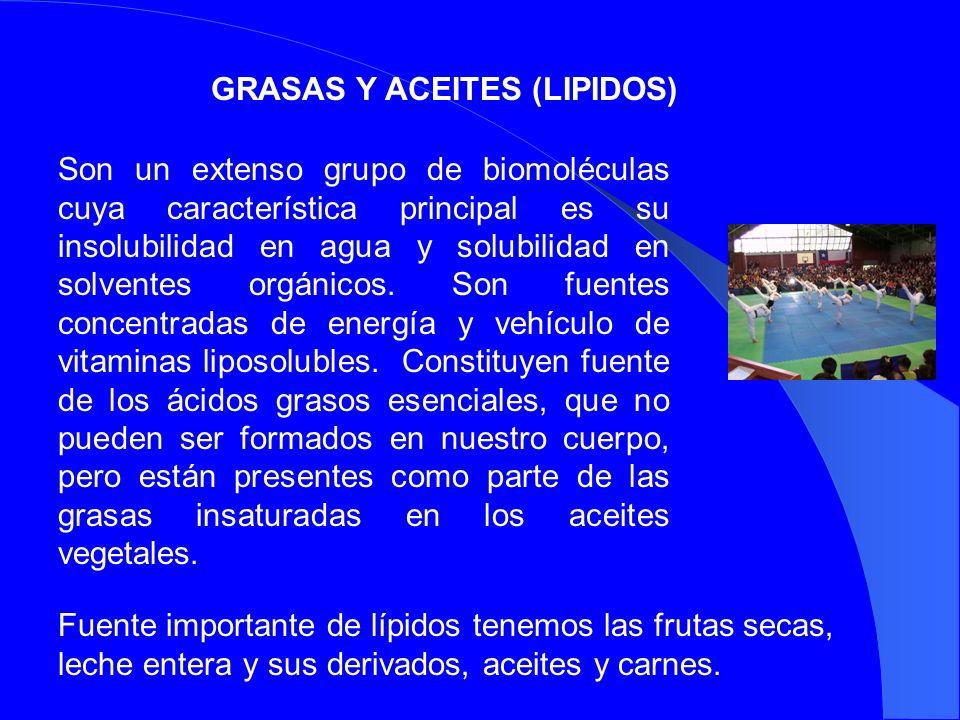 GRASAS Y ACEITES (LIPIDOS)