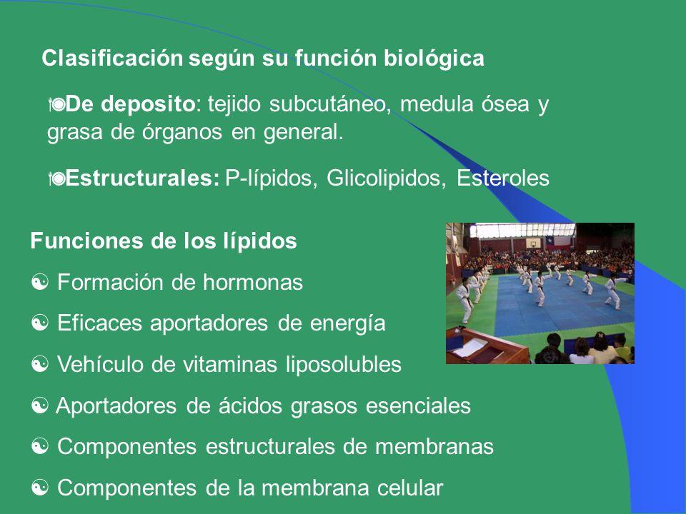 Clasificación según su función biológica