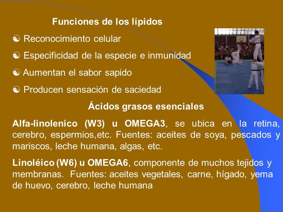 Funciones de los lípidos Ácidos grasos esenciales