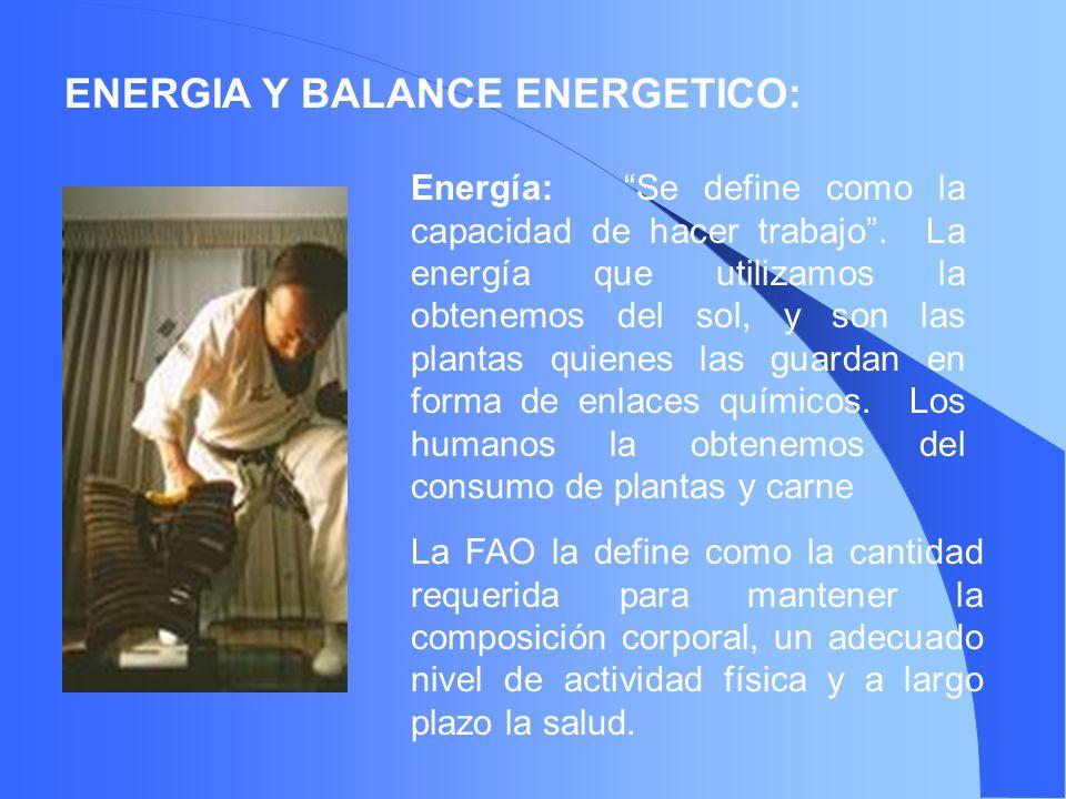 ENERGIA Y BALANCE ENERGETICO: