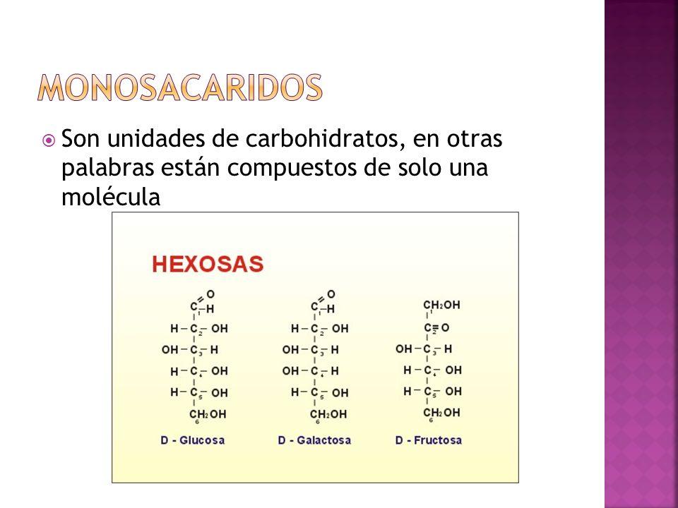 Monosacaridos Son unidades de carbohidratos, en otras palabras están compuestos de solo una molécula.