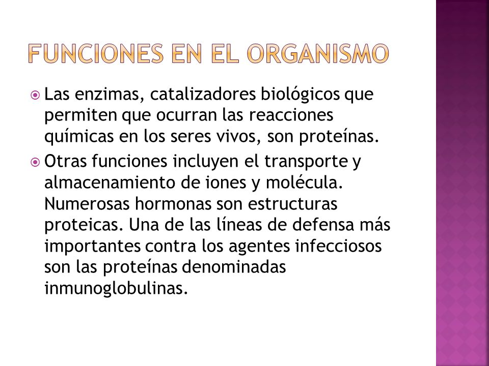 Funciones en el organismo