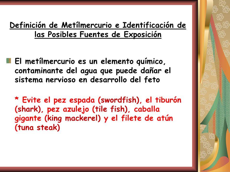 Definición de Metílmercurio e Identificación de las Posibles Fuentes de Exposición