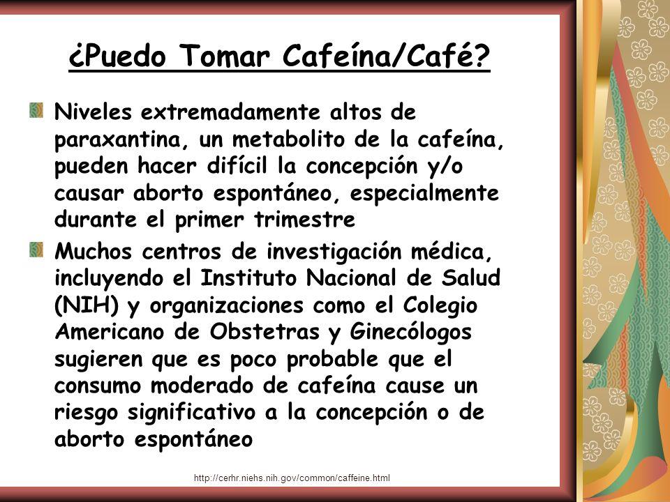 ¿Puedo Tomar Cafeína/Café