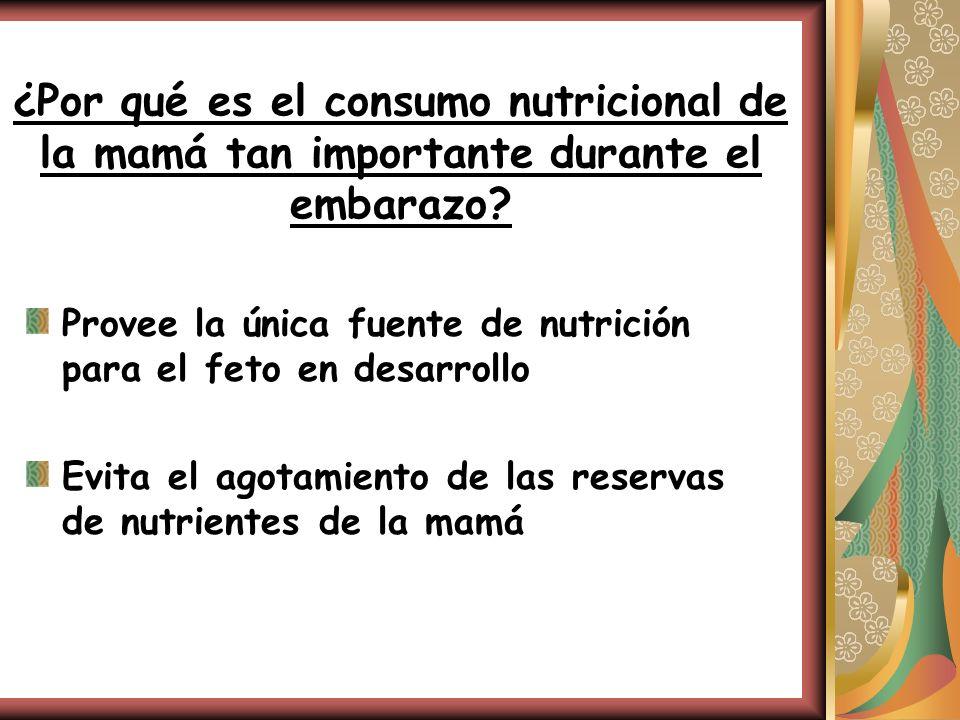 ¿Por qué es el consumo nutricional de la mamá tan importante durante el embarazo