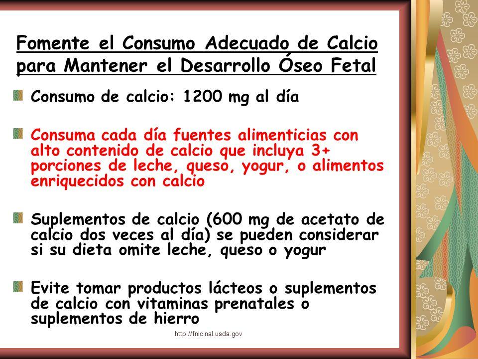 Fomente el Consumo Adecuado de Calcio para Mantener el Desarrollo Óseo Fetal