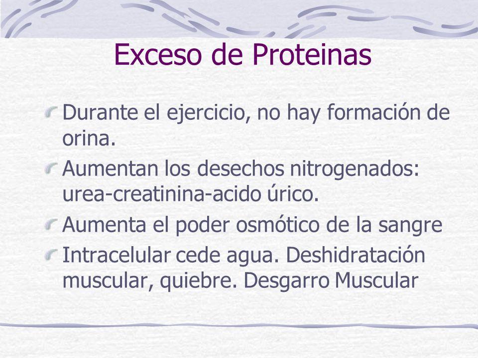 Exceso de Proteinas Durante el ejercicio, no hay formación de orina.